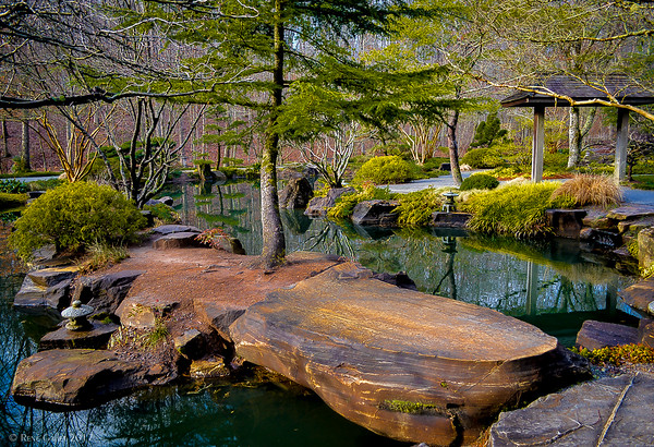 Febuary Morning in the Japanese Gardens