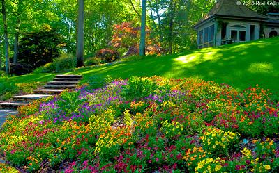 Summer Manor Garden