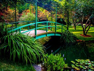 9 AM August Garden