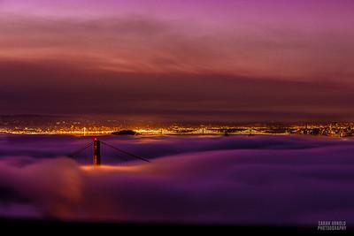 Karl Meets the Golden Gate Bridge -  California
