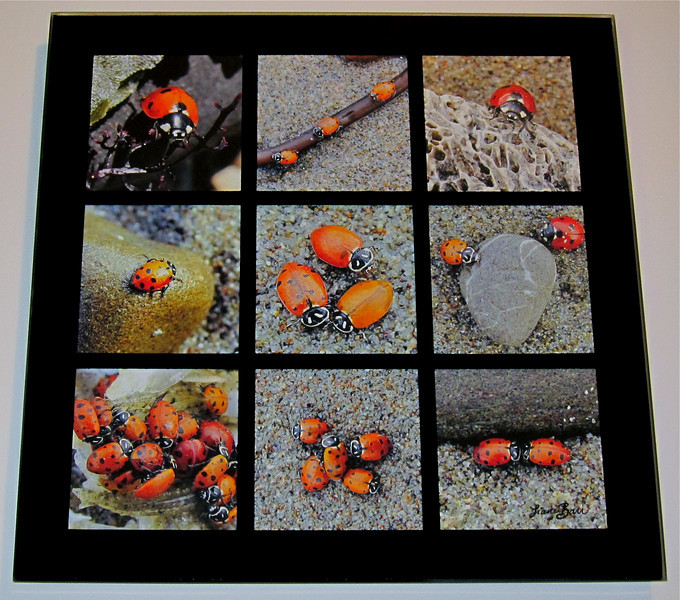 """""""Bug Beach Party Game Set"""". Tic Tac Toe - glass game set featuring lady bugs at the beach. Includes glass """"X's"""" and """"O's"""" game pieces.<br /> Overall dims: 11.5"""" X 11.5"""" square."""