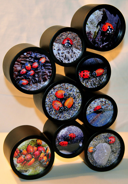 """""""Beach Bug Party"""".  9 image """"bubble"""" photo collage."""
