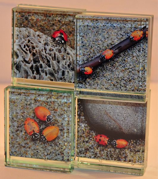 4 image glass photo collage.<br /> (limited quantities available)