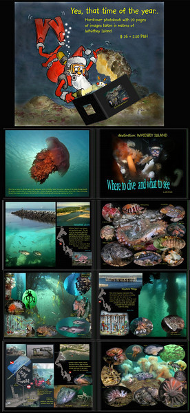 2008 Dive book - Whidbey Island  $ 25 plus $ 2.50 P&H