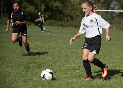 Gig Harbor Soccer 10-07-17