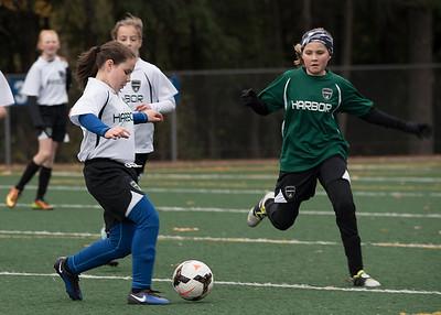 Gig Harbor soccer 11-04-17