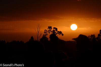 Sunset over Rochford Winery