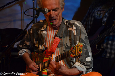 Ross Hannaford & The Critters