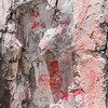 More Pictographs from the Gila Cliff Dwellings