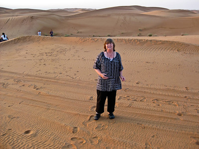 Gill in the desert Dubai