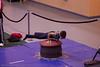 Albrook Gymmastics_0368
