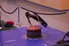 Albrook Gymmastics_0397