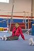 AlgrookGymnastics_7586