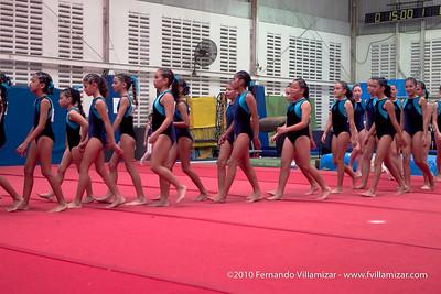 Foto: fVillamizar.com (c) 2010  ID: 100918_110550FVO_9171 .