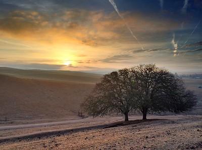 Paso Robles Sunrise #1