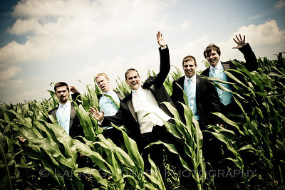 Gooms of the corn