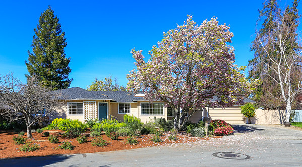 717 Ronald Ct, Los Altos