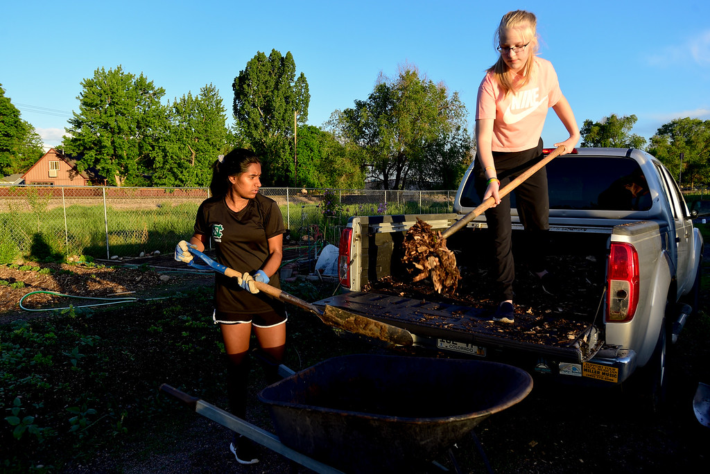 . Girl Scouts Ashley Reichenberg, right, and Gayathri Budamgunta, left, shovel mulch out of the scout leader\'s truck while working at the 11th Avenue Gardens in Longmont, Colorado on May 23, 2018. The girl scout troop plans to donate the vegetables from the garden to the OUR Center.  (Photo by Matthew Jonas/Staff Photographer)
