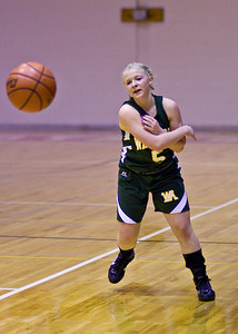 Wyoming Area at Redeemer Girls Districts_022710_0030