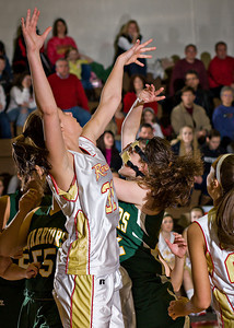 Wyoming Area at Redeemer Girls Districts_022710_0021