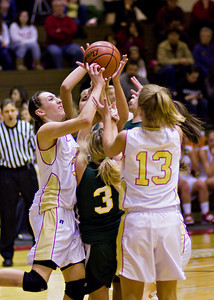 Wyoming Area at Redeemer Girls Districts_022710_0045