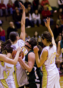 Wyoming Area at Redeemer Girls Districts_022710_0044