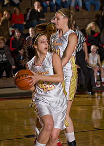 Wyoming Area at Redeemer Girls Districts_022710_0025
