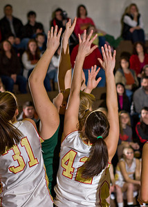 Wyoming Area at Redeemer Girls Districts_022710_0022