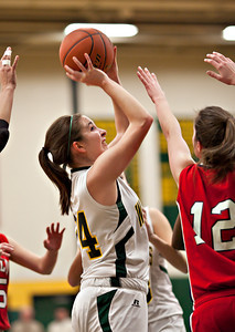 Coughlin at Wyoming Area Girls Bball-331 copy