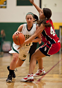 Coughlin at Wyoming Area Girls Bball-342 copy