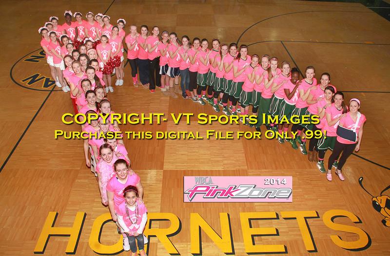 2014 Pink Zone Ribbon