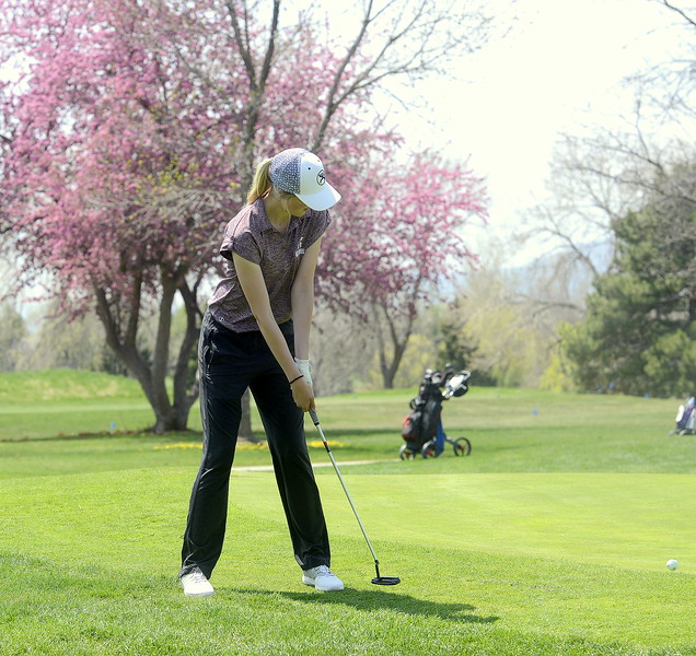 Berthoud's Kyra McDonald putts onto the 17th green  during Monday's Northern Conference league meet at the Olde Course in Loveland. (Mike Brohard/Loveland Reporter-Herald)