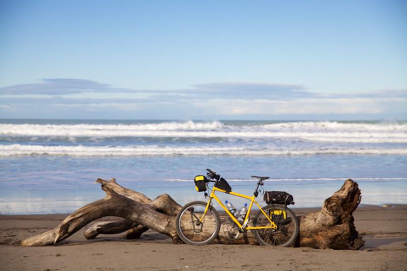 Thorn Nomad Midway Beach Gisborne Jun 2015 (2)