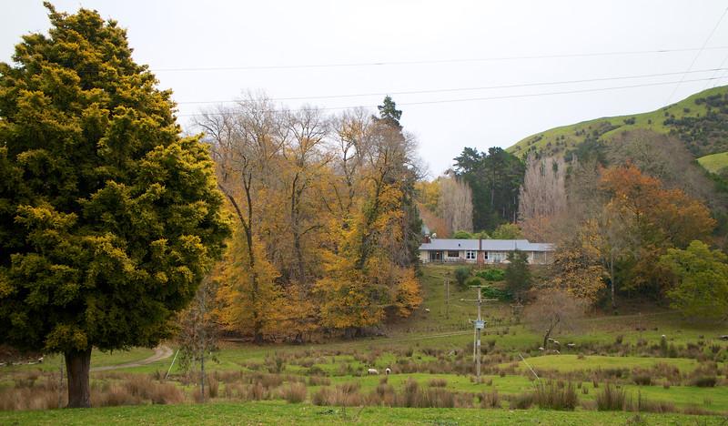 Linburn Station Waimata Valley Gisborne District June 2015