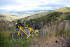 Near  Gentle Annie Summit  Gisborne Area Jun 2015