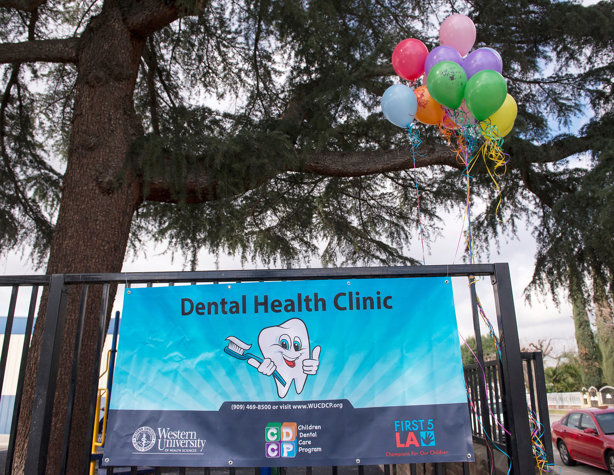 Western University of Health Sciences partnered with the Center for Oral Health and the American Dental Association to provide free dental exams to children 17 and younger for Give Kids A Smile Feb. 4, 2014 at Mendoza Elementary School in Pomona. WesternU College of Dental Medicine students and faculty provided free dental exams, cleanings, fluoride treatments and sealants. Give Kids A Smile is an annual one-day volunteer initiative to provide free educational and preventative oral health services to children. (Jeff Malet, WesternU)