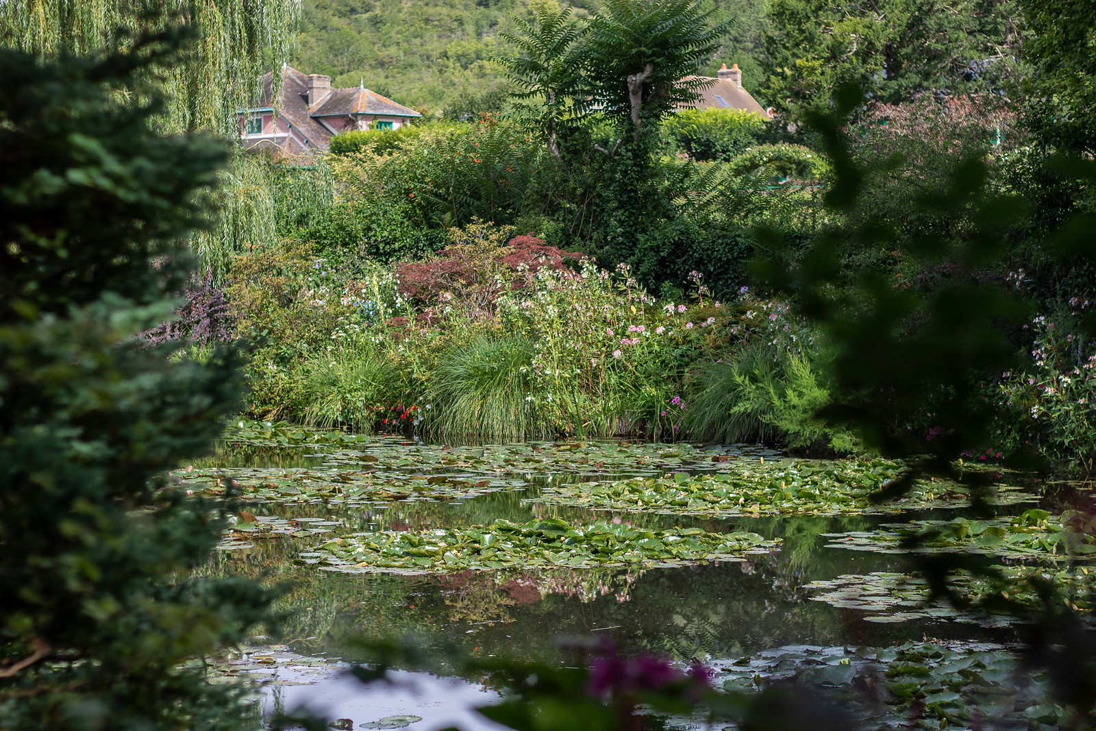 The famous Monet Garden - the pond and water lilies