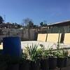 2016April23-Mexico-PuenteDeAmistad-0006
