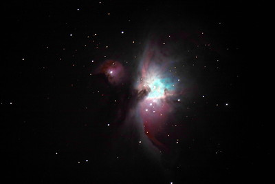 Taken by Roy Ellzey – Orion nebula using the PlaneWave telescope