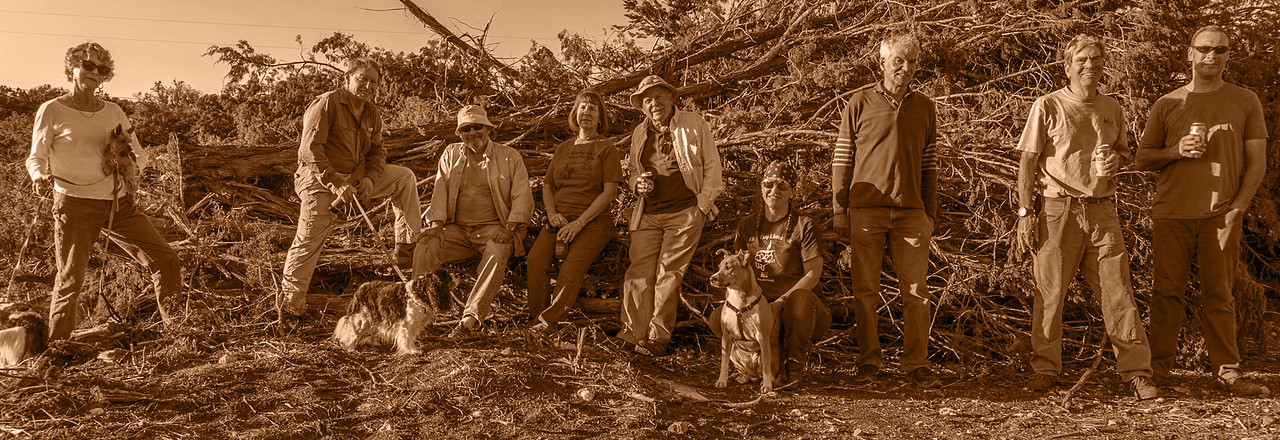 Crew that led the Cedar removal project
