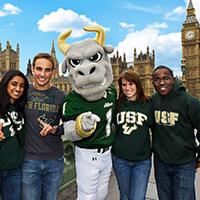 USF: Global Bulls