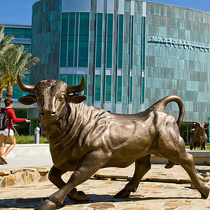 USF: Estate, Trusts and Wills