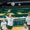 USF VB vs UCF on 11-4-2015 at  The Sundome in  ,