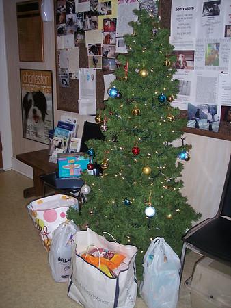 Christmas tree at 1430