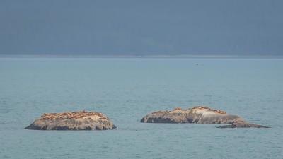 Glacier Bay-1-22