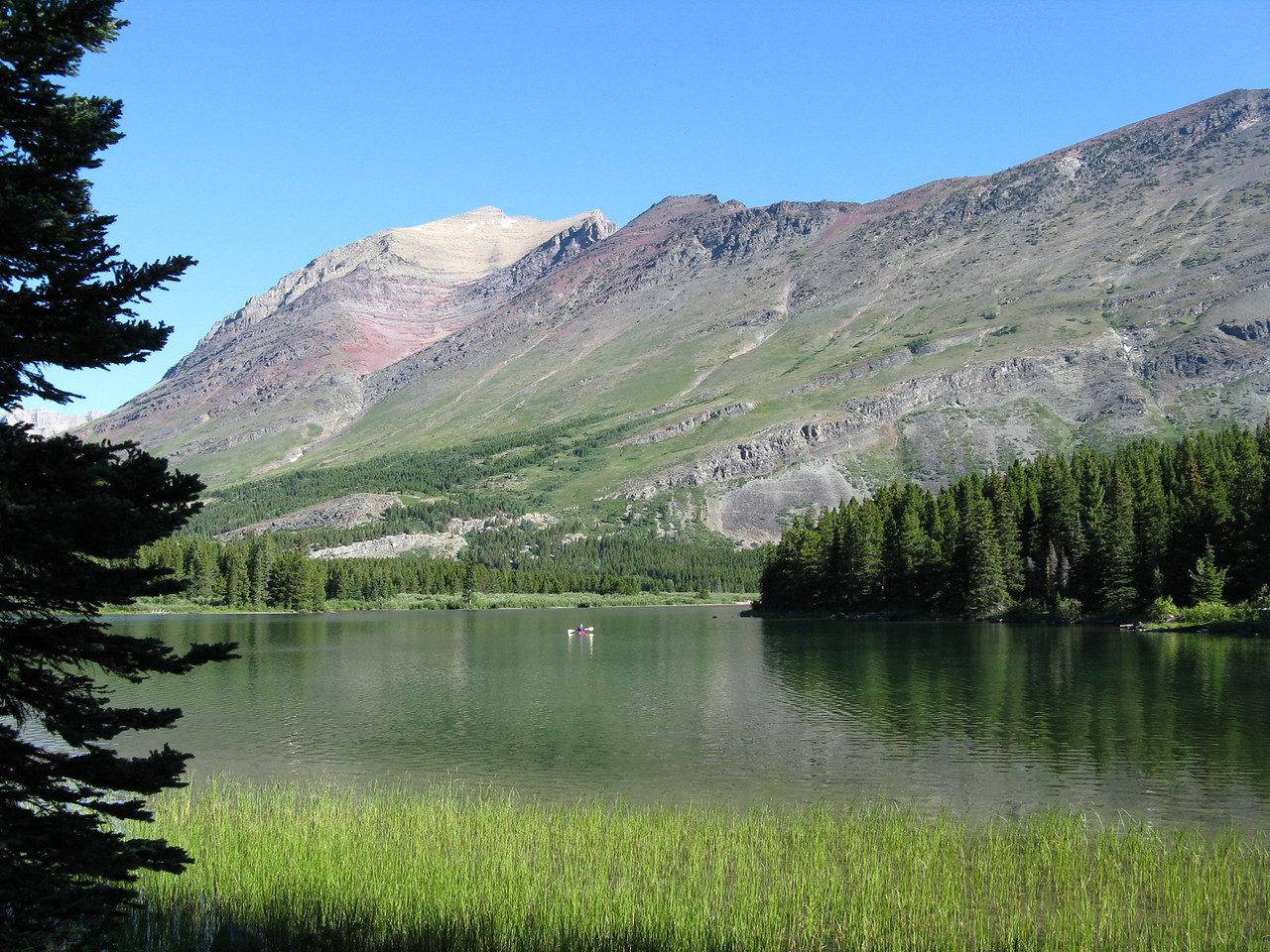 Looking northwest from the upper south shore trail around Swiftcurrent Lake.
