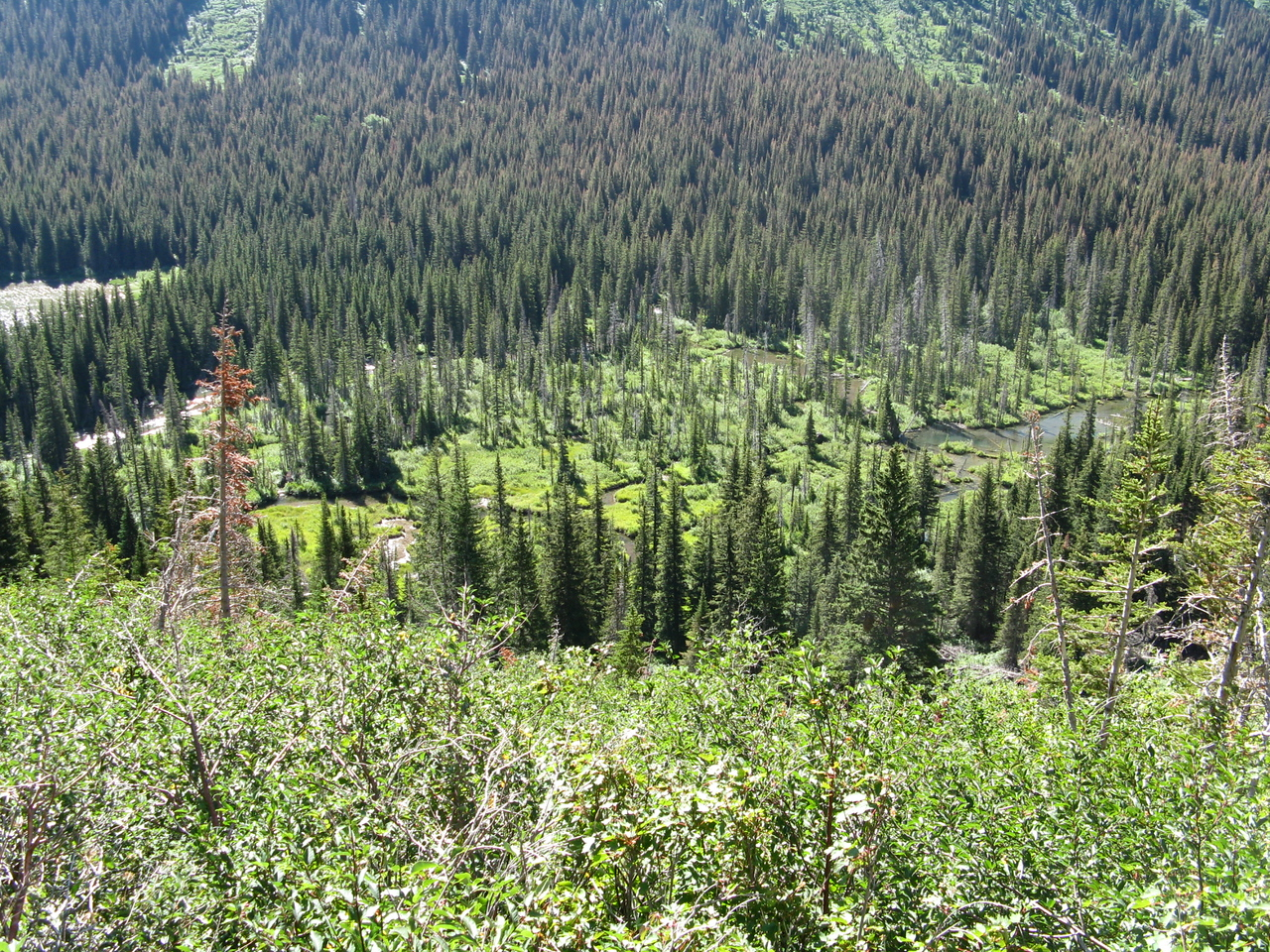 Grinnell Creek above Lake Josephine.