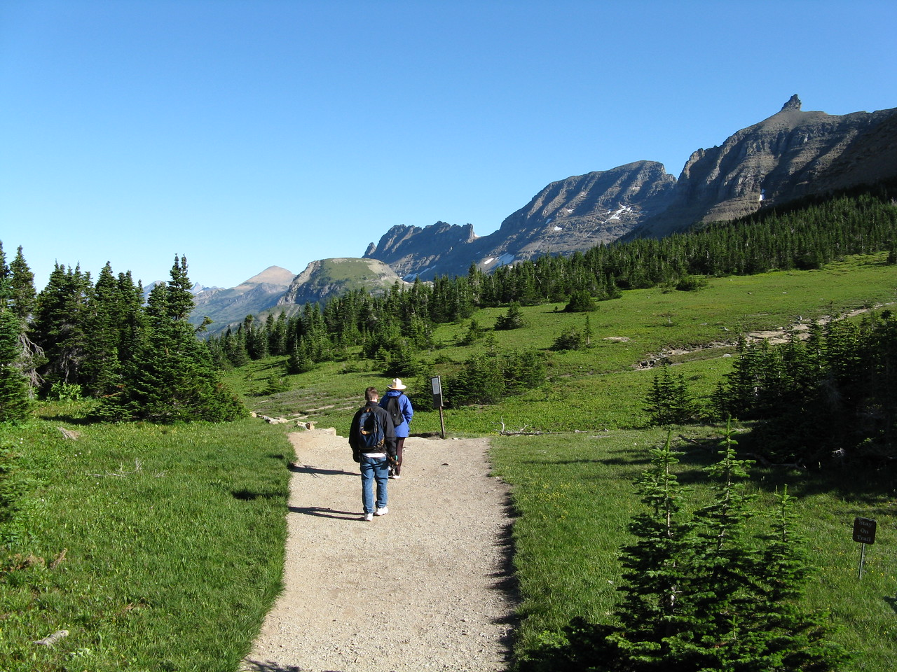 At the beginning, Highline Trail is a wide path that meanders through a meadow.