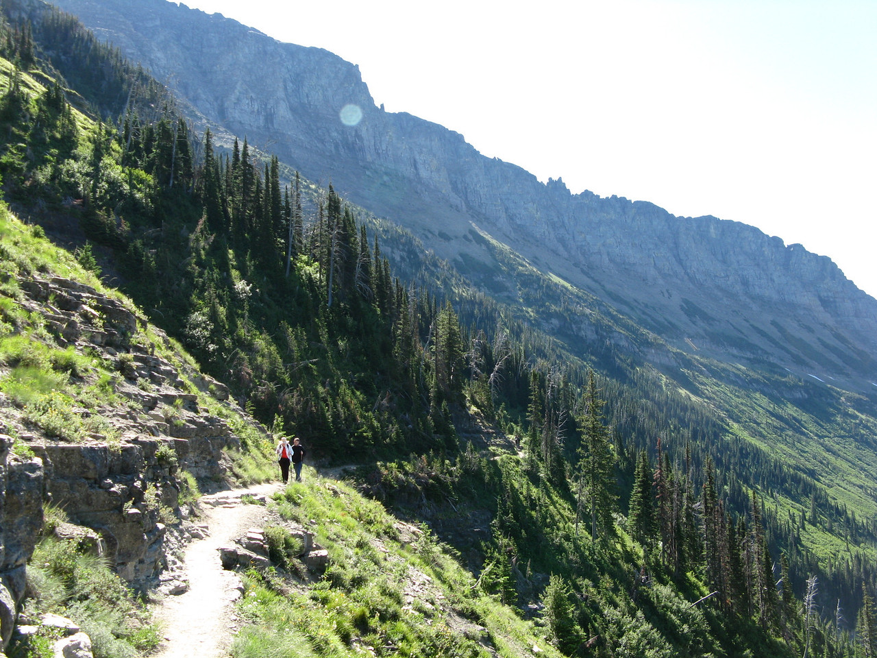 Looking back on the trail, which extends from the left lower foreground to the right side of the picture, although it is hard to see the trail beyond the tree line.