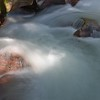 091 Avalanche Creek_0347